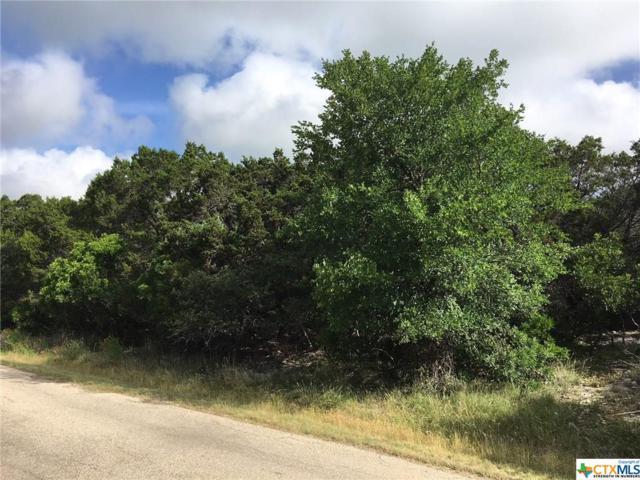 15992 Brazos Drive, Temple, TX 76502 (MLS #347884) :: Magnolia Realty