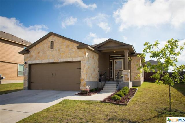 2241 Olive Hill Dr., New Braunfels, TX 78130 (MLS #347885) :: Erin Caraway Group