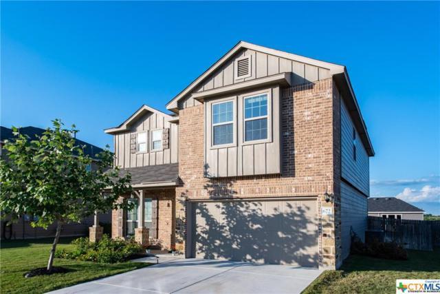 672 Community, New Braunfels, TX 78132 (MLS #347886) :: Erin Caraway Group