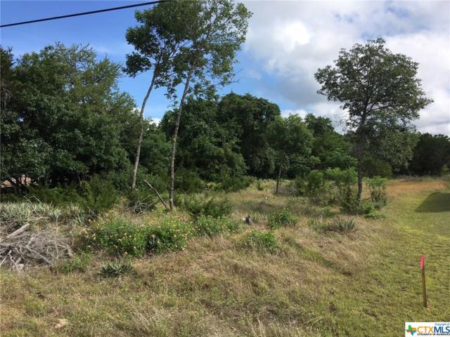 000 Begonia Trail, Belton, TX 76513 (MLS #347892) :: Erin Caraway Group