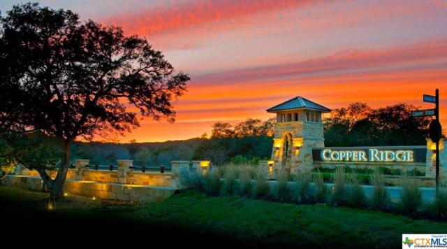 541 Cantera, New Braunfels, TX 78132 (#348031) :: Realty Executives - Town & Country