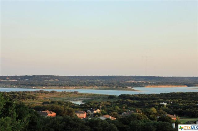 101, 103 Riata Circle, Harker Heights, TX 76548 (MLS #348201) :: Texas Premier Realty