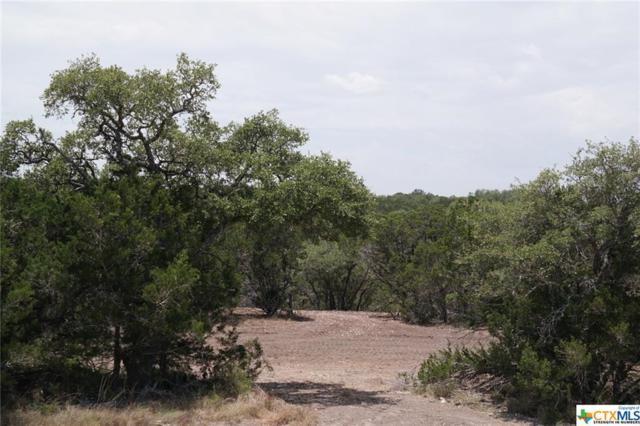 973 Malbec Loop, Canyon Lake, TX 78133 (MLS #348915) :: Magnolia Realty