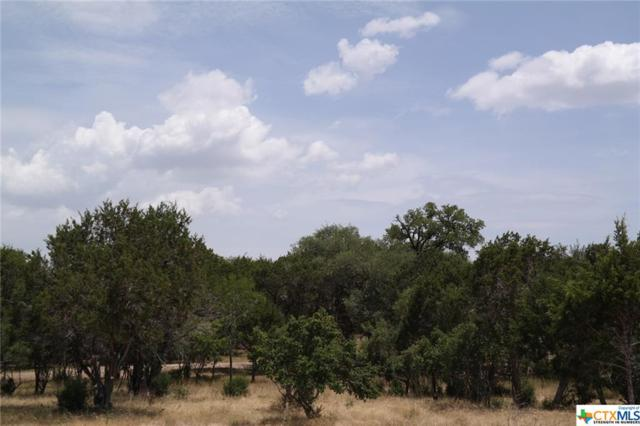 2102 Alto Lago Road, Canyon Lake, TX 78133 (MLS #348940) :: Magnolia Realty