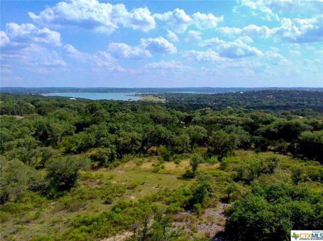1545 Lake Ridge, Canyon Lake, TX 78133 (MLS #349206) :: Magnolia Realty
