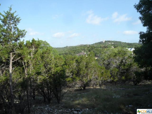 396 Herauf Drive, Canyon Lake, TX 78133 (MLS #349283) :: Magnolia Realty