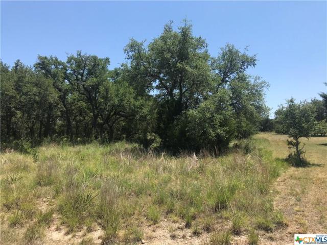 422 Quest, Spring Branch, TX 78070 (MLS #349576) :: Magnolia Realty