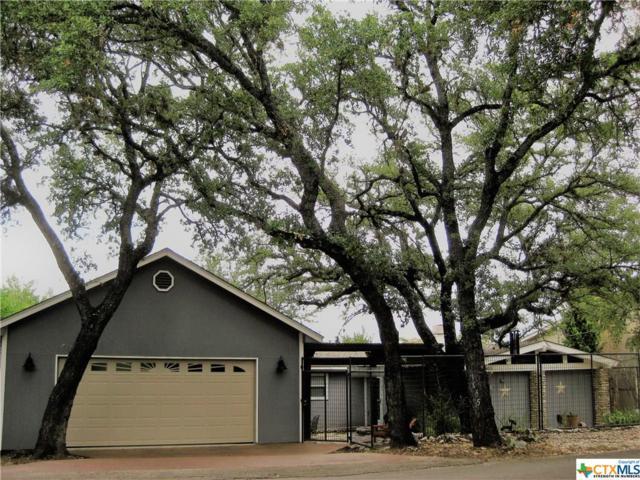 1455 S Skyline Drive, Canyon Lake, TX 78133 (MLS #349609) :: Magnolia Realty