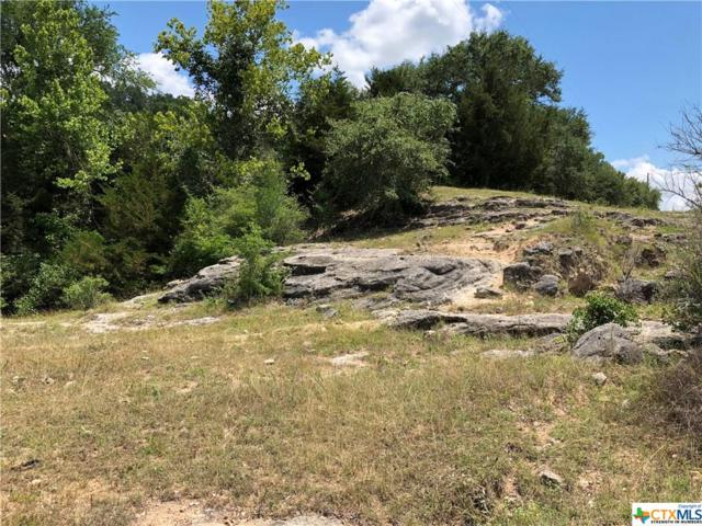 000 County Road 1, Hallettsville, TX 77964 (MLS #349680) :: RE/MAX Land & Homes