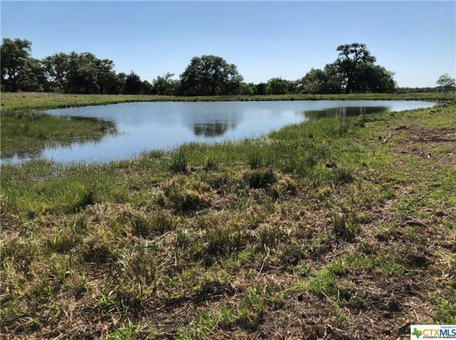 000 County Road 445, Hallettsville, TX 77964 (MLS #349738) :: RE/MAX Land & Homes