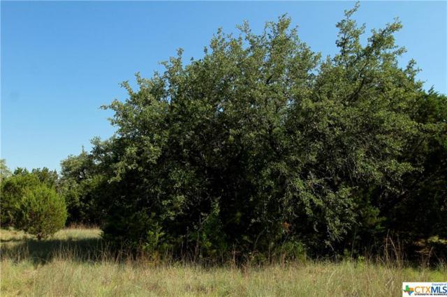 0 Pr 3447, Kempner, TX 76539 (MLS #349771) :: Magnolia Realty