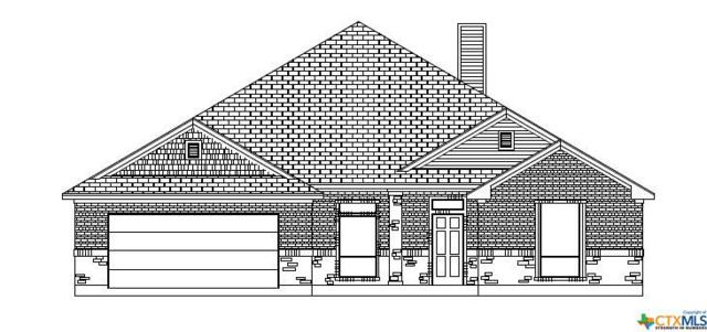 7002 N Crystal Valley Drive, Temple, TX 76502 (MLS #349781) :: The Suzanne Kuntz Real Estate Team