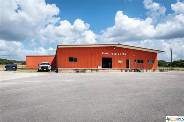 768 Fm 2673, Canyon Lake, TX 78133 (MLS #349929) :: Texas Premier Realty
