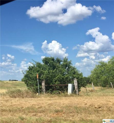 7445 Hwy 304, Harwood, TX 78632 (MLS #349956) :: Texas Premier Realty