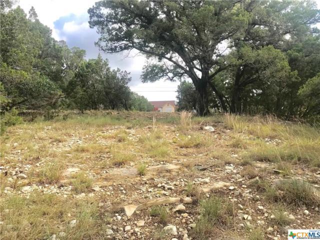536 Toye, Canyon Lake, TX 78133 (MLS #350056) :: Magnolia Realty
