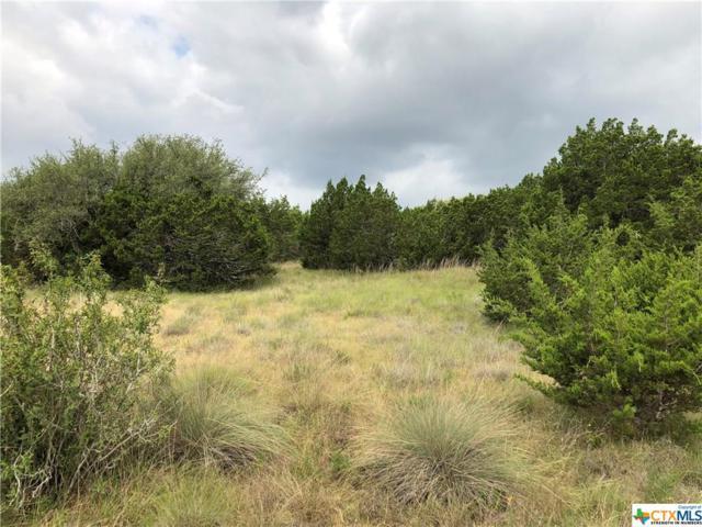 550 Canyon Rock Drive #18, Spring Branch, TX 78070 (MLS #350117) :: Magnolia Realty