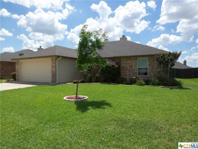 3903 Jake Spoon Drive, Killeen, TX 76549 (MLS #350134) :: Texas Premier Realty