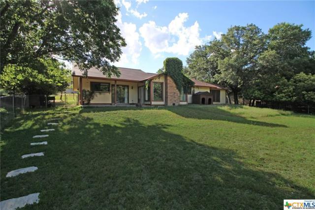 3018 Oakwood Drive, Harker Heights, TX 76548 (MLS #350176) :: The i35 Group