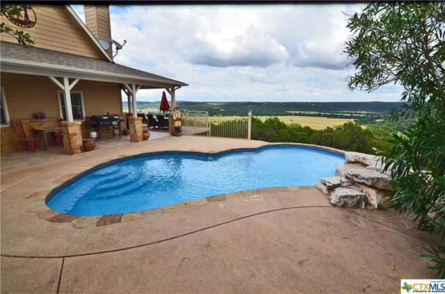 385 Turkey Drive, Canyon Lake, TX 78133 (MLS #350286) :: Berkshire Hathaway HomeServices Don Johnson, REALTORS®