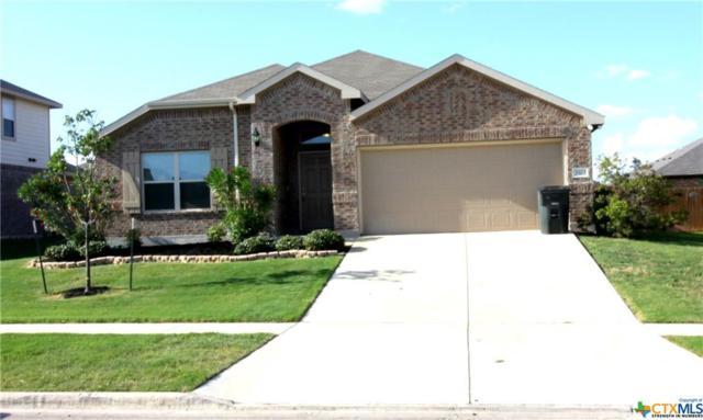 3503 Joyce Lane, Killeen, TX 76549 (MLS #350313) :: Texas Premier Realty