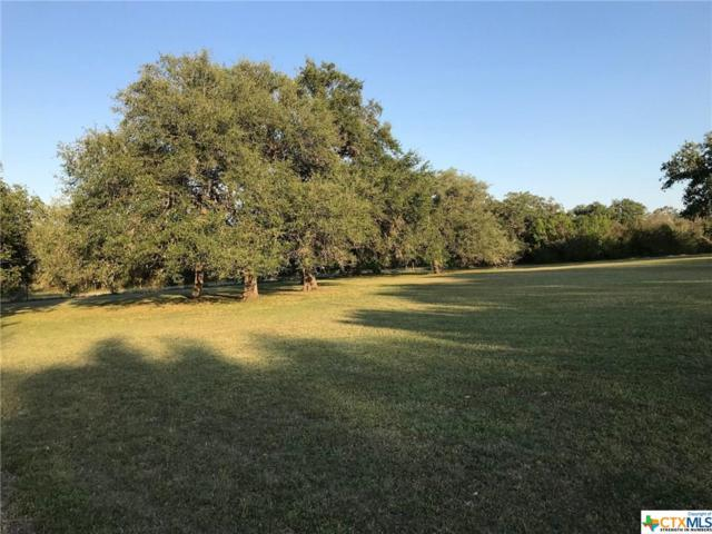 1299 Fm 1351, Goliad, TX 77963 (MLS #350341) :: RE/MAX Land & Homes