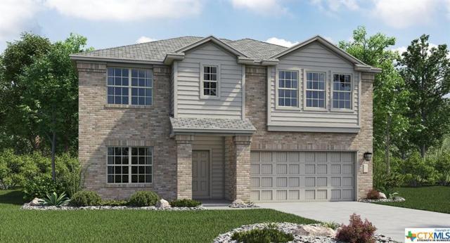 3908 Brunswick, Killeen, TX 76549 (MLS #350348) :: Texas Premier Realty