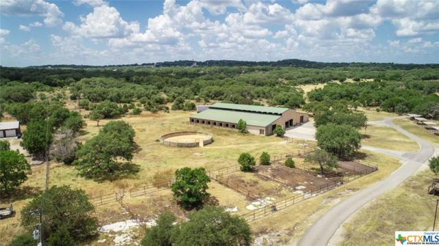 3220 Rolling Oaks, New Braunfels, TX 78132 (MLS #350382) :: RE/MAX Land & Homes