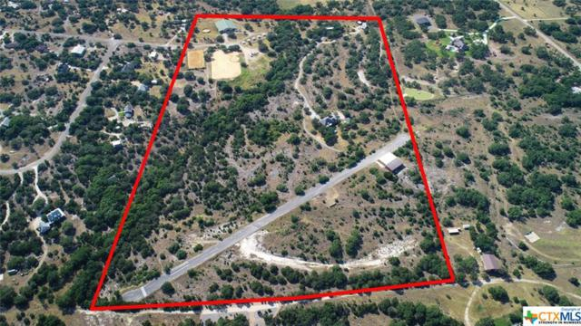 3220 Rolling Oaks Drive, New Braunfels, TX 78109 (MLS #350383) :: The Graham Team
