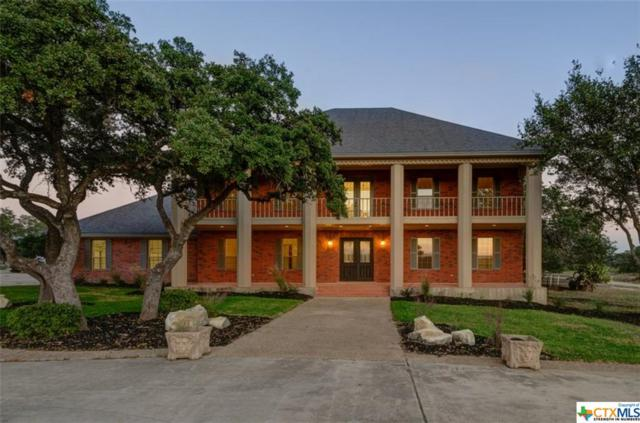 3220 Rolling Oaks, New Braunfels, TX 78132 (MLS #350384) :: The i35 Group
