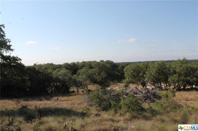 5782 Copper Valley, New Braunfels, TX 78132 (#350463) :: Realty Executives - Town & Country