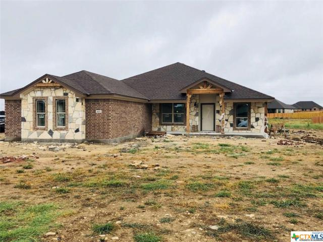 4101 W Big Brooke Avenue, Salado, TX 76571 (MLS #350565) :: Texas Premier Realty