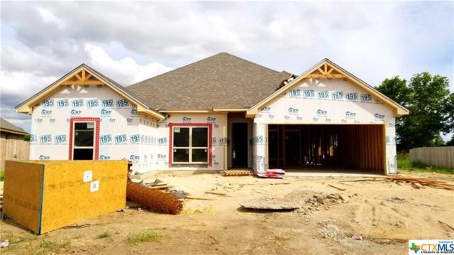 3119 Crystal Ann, Temple, TX 76502 (MLS #350627) :: Texas Premier Realty