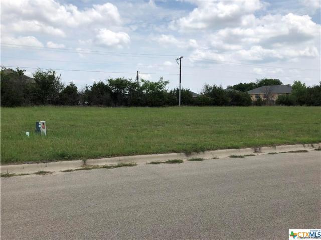 4204 Ivory Lane, Killeen, TX 76549 (MLS #350631) :: Texas Premier Realty