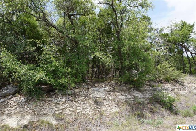211 Cielo Vista, Canyon Lake, TX 78133 (MLS #350787) :: Erin Caraway Group