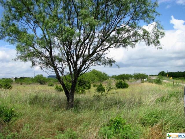 TBD Fm 1783, Gatesville, TX 76528 (MLS #350841) :: The i35 Group