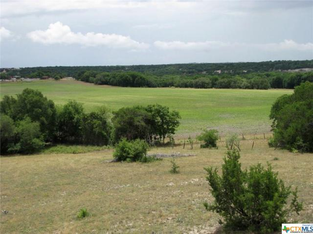 TBD County Road 343, Gatesville, TX 76528 (MLS #350842) :: The i35 Group