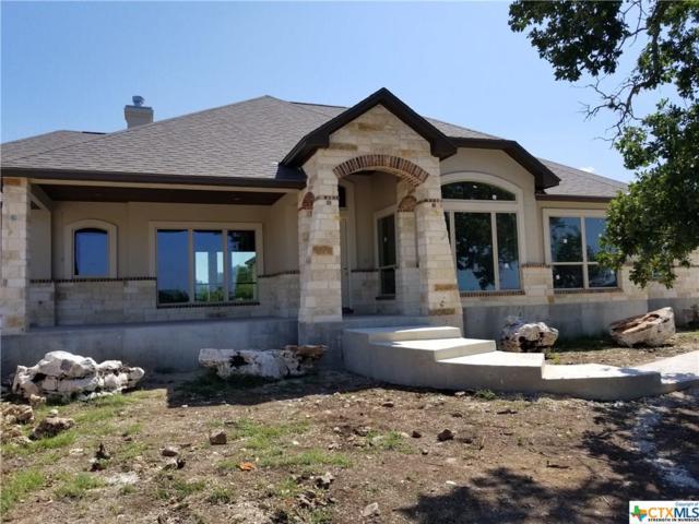 1017 Stradina, New Braunfels, TX 78132 (MLS #350967) :: The Suzanne Kuntz Real Estate Team