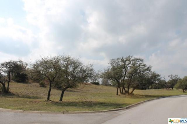2530 George Pass, Canyon Lake, TX 78133 (MLS #351160) :: Erin Caraway Group