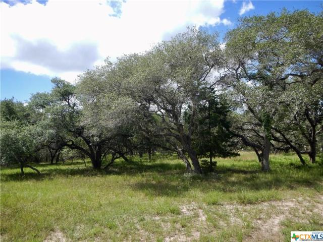 000 Post Oak Branch, Inez, TX 77968 (MLS #351393) :: Kopecky Group at RE/MAX Land & Homes