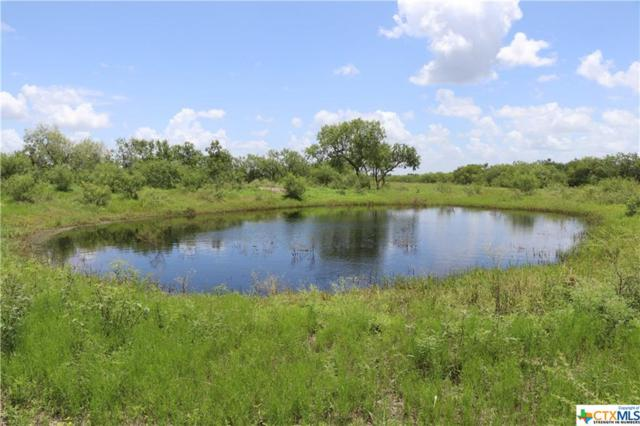 1195 Old Fannin Road, Goliad, TX 77963 (MLS #351471) :: RE/MAX Land & Homes