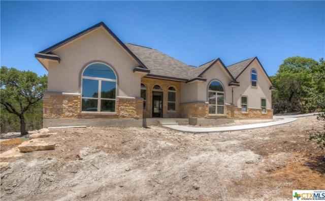 1005 Flaman, Canyon Lake, TX 78133 (MLS #351558) :: Magnolia Realty