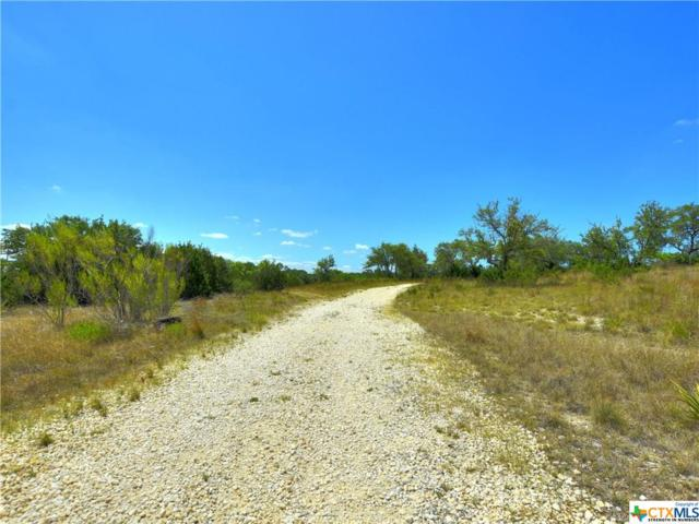 TBD Friday Mountain Ranch Rd 17.74, Johnson City, TX 78636 (MLS #351900) :: RE/MAX Land & Homes