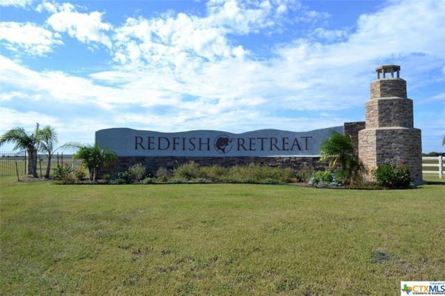 000 Redfish Drive, Port Lavaca, TX 77979 (MLS #351917) :: Magnolia Realty