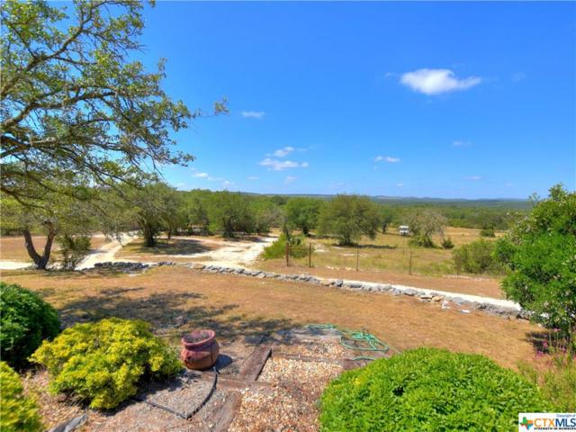 321 Friday Mountain Ranch Rd, Johnson City, TX 78636 (MLS #352080) :: RE/MAX Land & Homes
