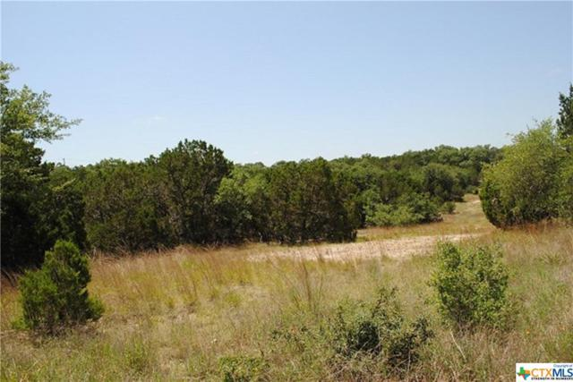 1650 Fm 3424, Canyon Lake, TX 78133 (MLS #352235) :: Erin Caraway Group