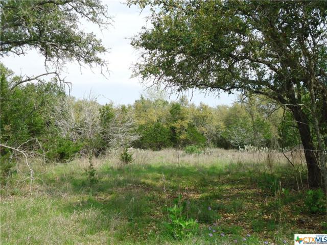 142 Abierto Cove Dr., Blanco, TX 78606 (MLS #352330) :: Magnolia Realty