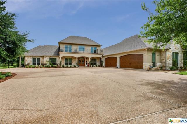 15121 Carriage House Lane, Waco, TX 76712 (MLS #352348) :: Magnolia Realty