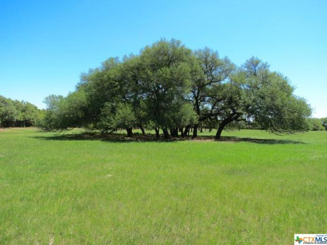 00 Cr 103, Lampasas, TX 76550 (MLS #352449) :: Texas Premier Realty