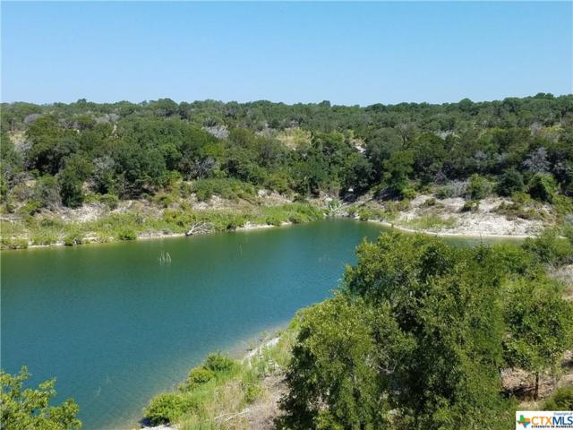 Lot 14 Block 2 Lakeview Estates Drive, Morgan's Point Resort, TX 76513 (MLS #352471) :: Erin Caraway Group