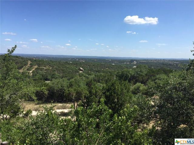1177 Mount Moriah, Spring Branch, TX 78070 (MLS #352535) :: Magnolia Realty